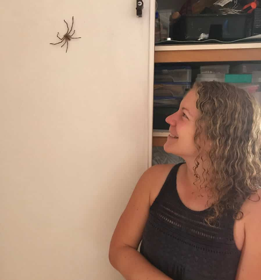 Michelle with Huntsman Spider